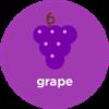 Picture of 9K FS Grape MD (FS230)